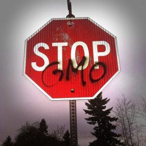 contaminación-GMO-caches