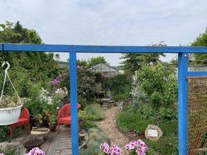 patio-permacultura