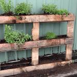 pared-vegetal-palet