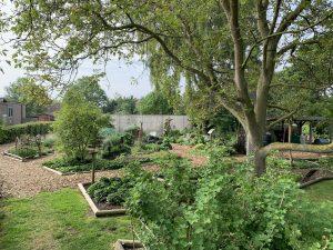 jardín de cubierto